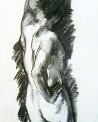 Male Torso II