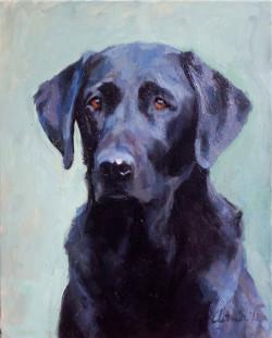 Animal Portrait - Dog; oil on canvas